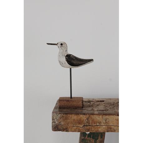 Kleiner Küstenvogel