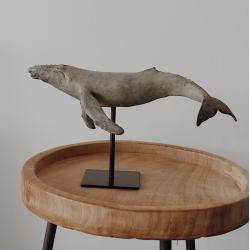 Wal auf Podest, klein